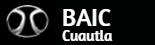 Logo BAIC Cuautla