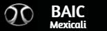 Logo BAIC Mexicali
