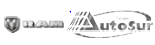 Logo RAM Prestigio Motriz