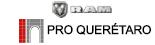 Logo RAM Pro Querétaro