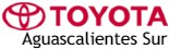Toyota Aguascalientes Sur